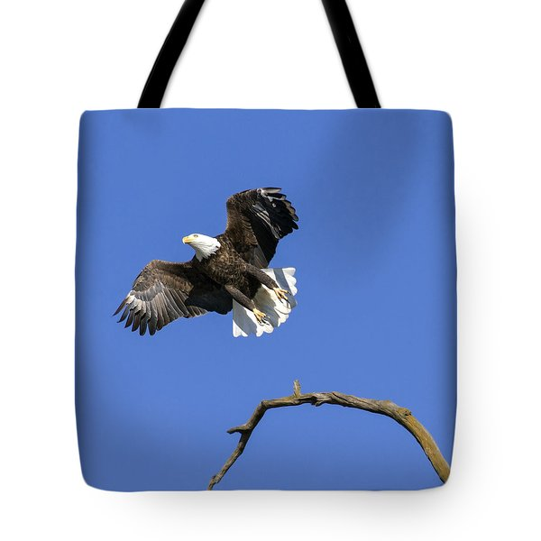 Tote Bag featuring the photograph King Of The Sky 4 by David Lester