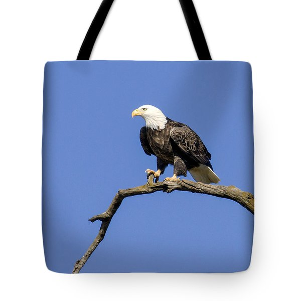 Tote Bag featuring the photograph King Of The Sky by David Lester