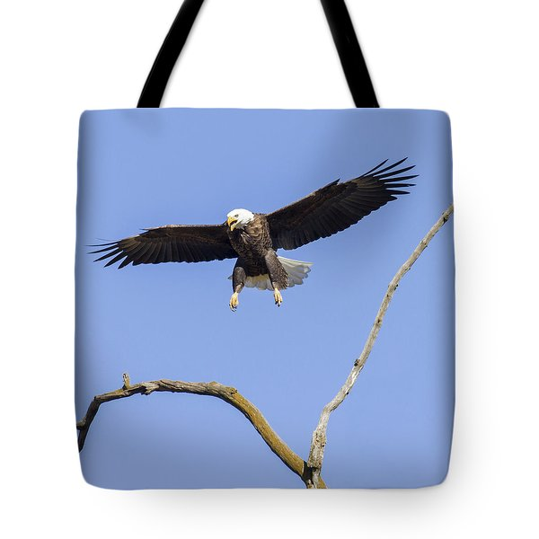 Tote Bag featuring the photograph Landing Approach 1 by David Lester