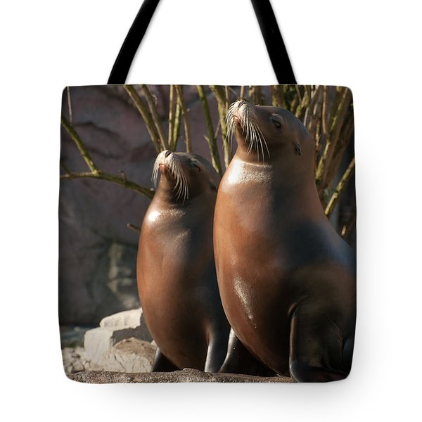 Tote Bag featuring the photograph Let's Sing by Sabine Edrissi