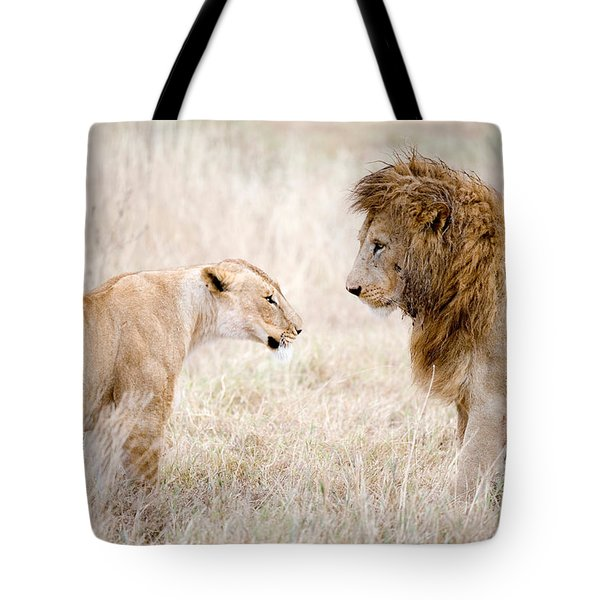 Lion And A Lioness Panthera Leo Tote Bag