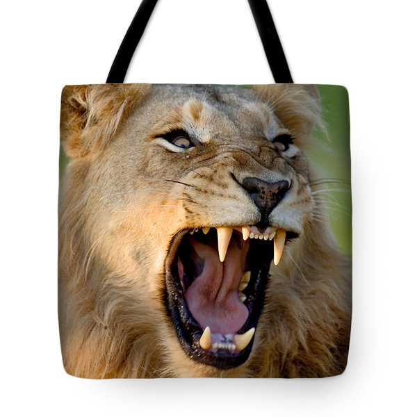Lion Tote Bag by Johan Swanepoel