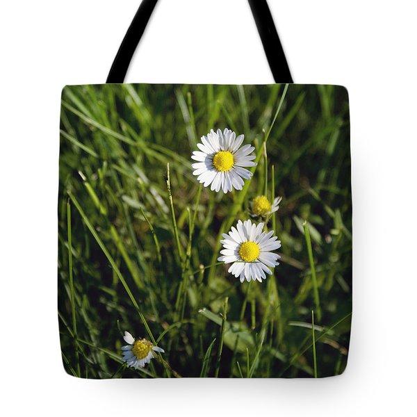 Little White Daisies Tote Bag
