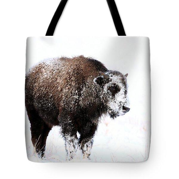 Lone Calf Tote Bag