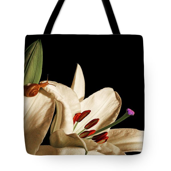 Looking For Alice Tote Bag