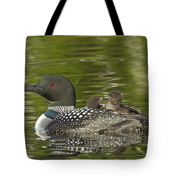 Loon Parent With Two Chicks Tote Bag