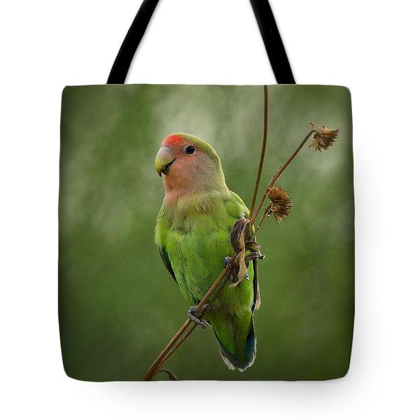 Lovely Little Lovebird  Tote Bag