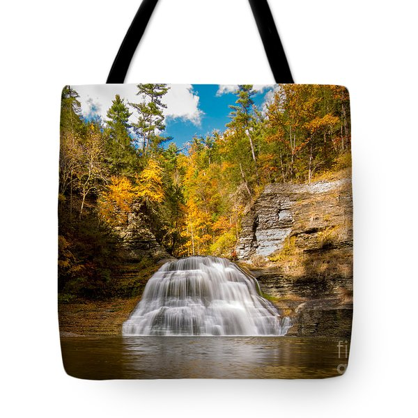 Lower Treman Falls Tote Bag