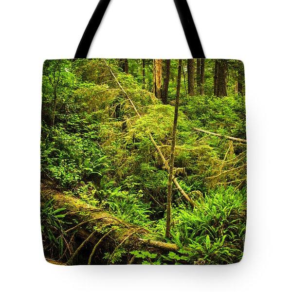 Lush Temperate Rainforest Tote Bag by Elena Elisseeva