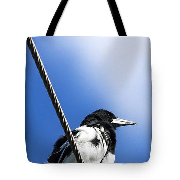 Magpie Up High Tote Bag by Jorgo Photography - Wall Art Gallery