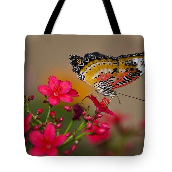Malay Lacewing Butterfly  Tote Bag by Saija  Lehtonen