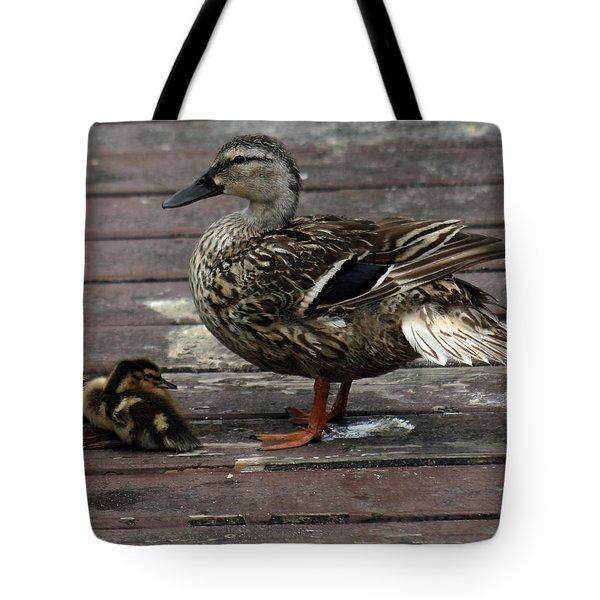 Mama Duck And Ducklings Tote Bag by Pamela Walton