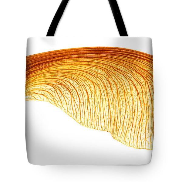 Maple Seed Pod Tote Bag