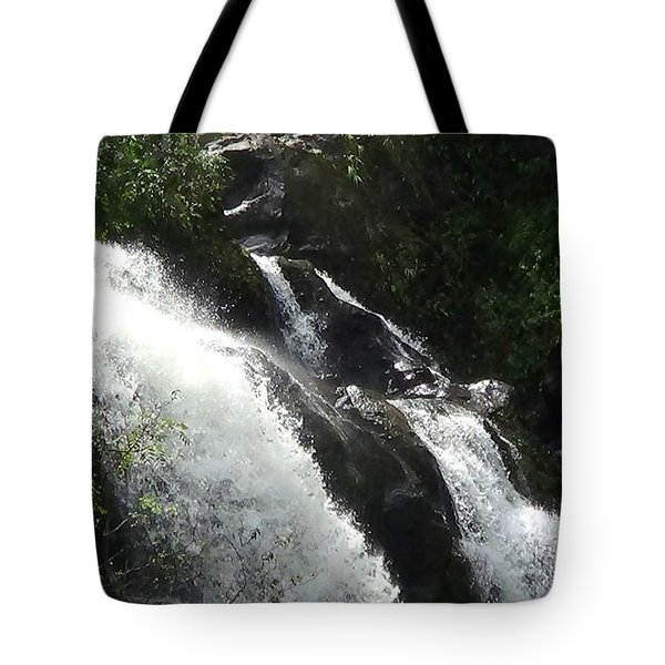 Tote Bag featuring the photograph Maui Waterfall by Fred Wilson