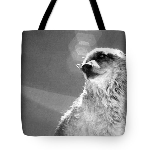 Tote Bag featuring the photograph Medicine Wolf by Deborah Moen