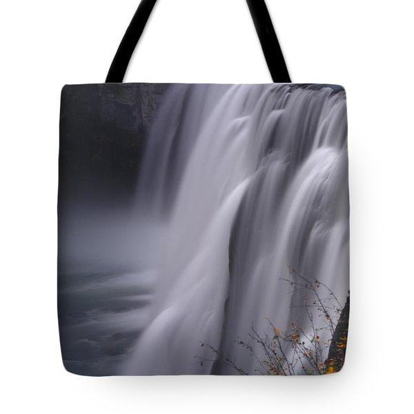 Mesa Falls Tote Bag