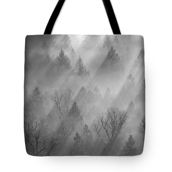 Morning Light -vertical Tote Bag