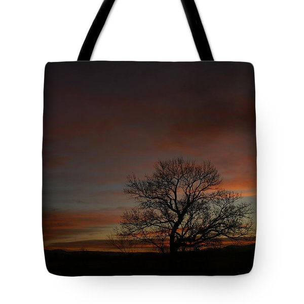 Morning Sky In Bosque Tote Bag