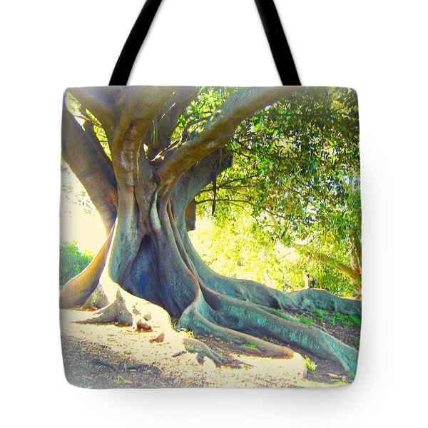 Morton Bay Fig Tree Tote Bag