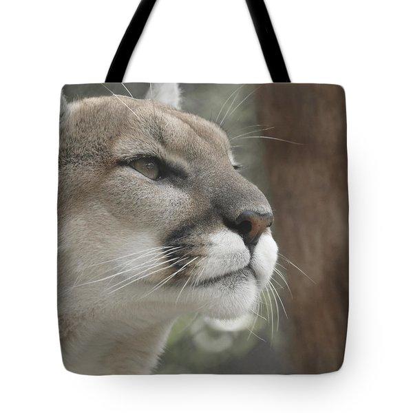 Mountain Lion Tote Bag by Ernie Echols