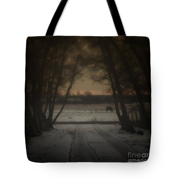 My Dark Forest Tote Bag by Stelios Kleanthous