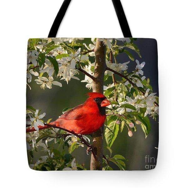 Red Cardinal In Flowers Tote Bag