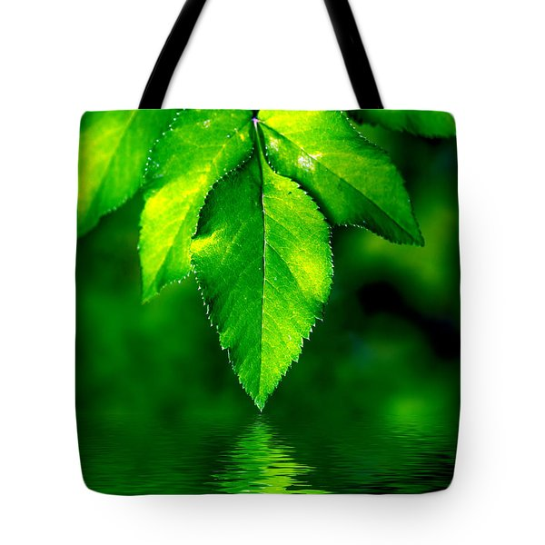Natural Leaves Background Tote Bag by Michal Bednarek