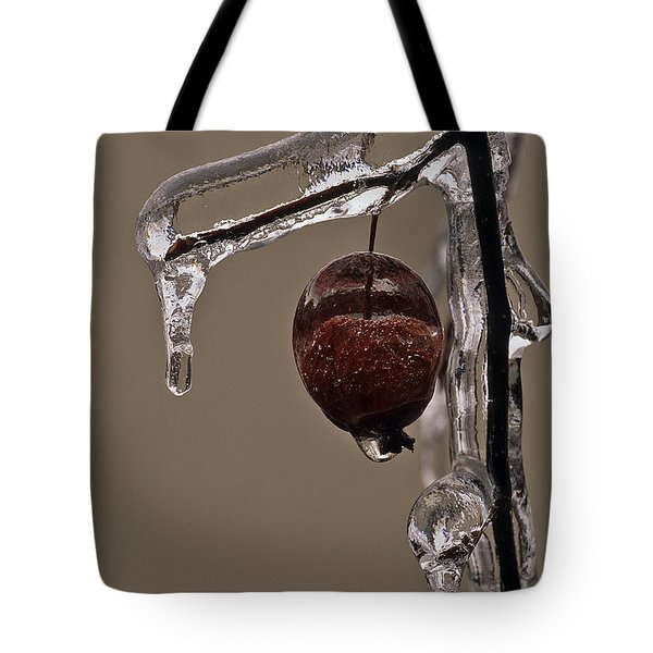 Nature's Candy Apple Tote Bag by Tony Beck