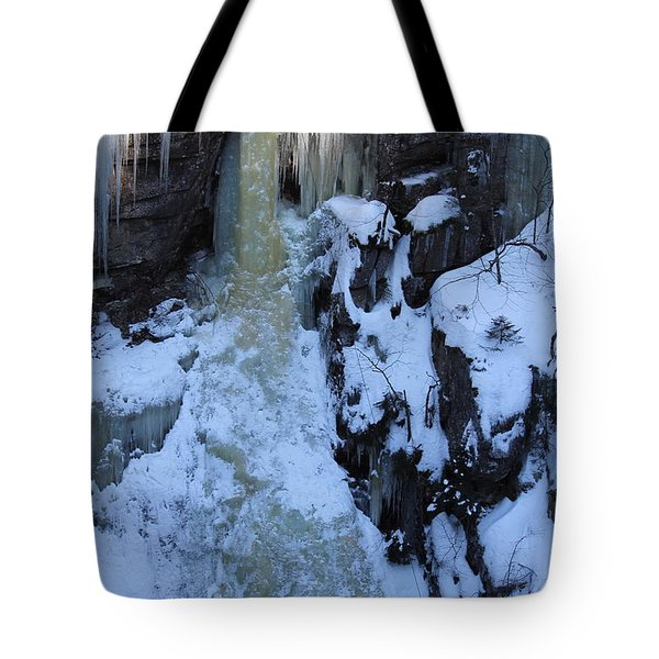 The Wintery Flume  Tote Bag