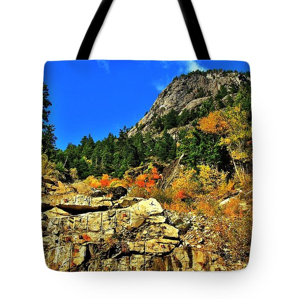 North Cascades  Tote Bag by Benjamin Yeager