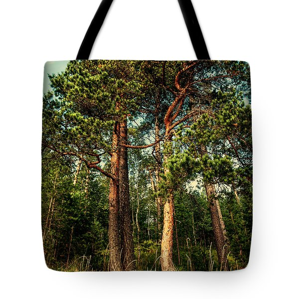 Northern Forest  Tote Bag by Jenny Rainbow