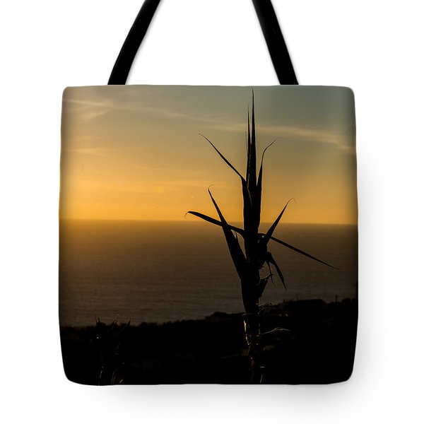 One At Sunset Tote Bag