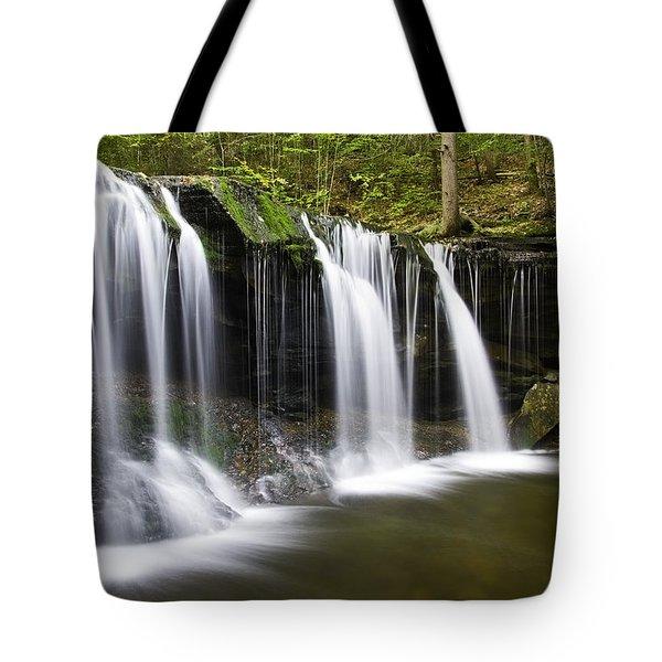 Oneida Falls Tote Bag