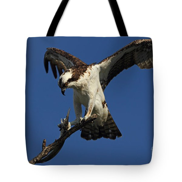 Tote Bag featuring the photograph Osprey With A Fish Photo by Meg Rousher