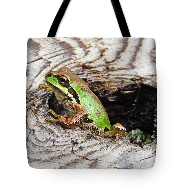 Pacific Chorus Frog Tote Bag