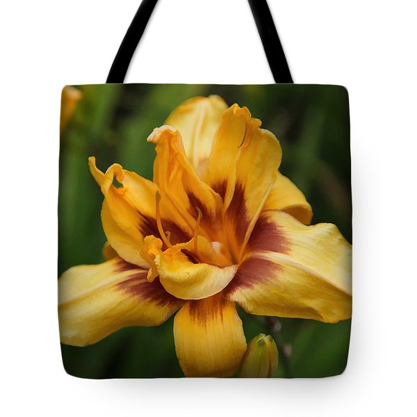 Painted By Nature Tote Bag by Dennis Baswell