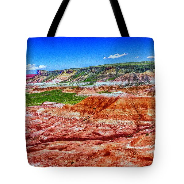 Painted Desert National Park Panorama Tote Bag by Bob and Nadine Johnston