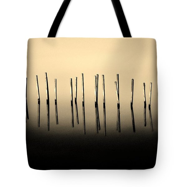 Palisade Tote Bag by Robert Geary