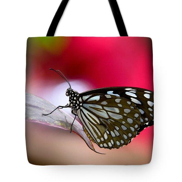 Paper Kite Butterfly  Tote Bag by Saija  Lehtonen