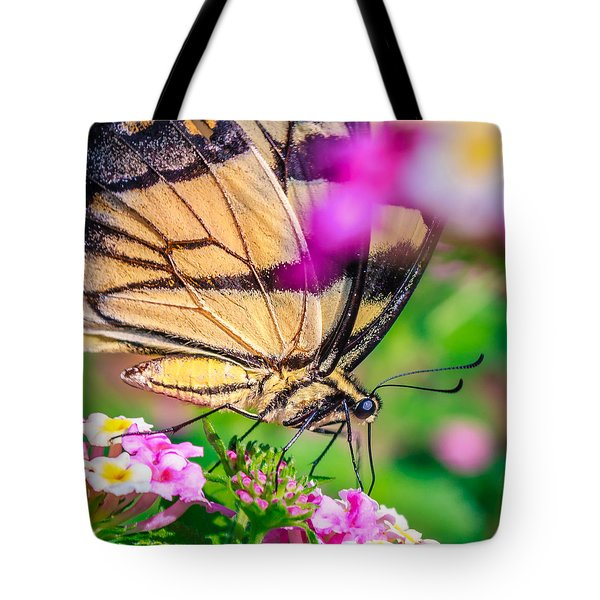 Tote Bag featuring the photograph Papilio Glaucus by Rob Sellers