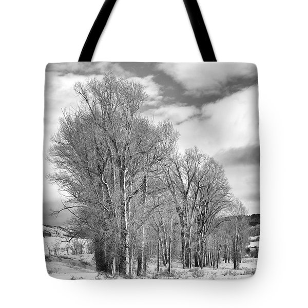 Peaceful Moments Tote Bag by Sandra Bronstein