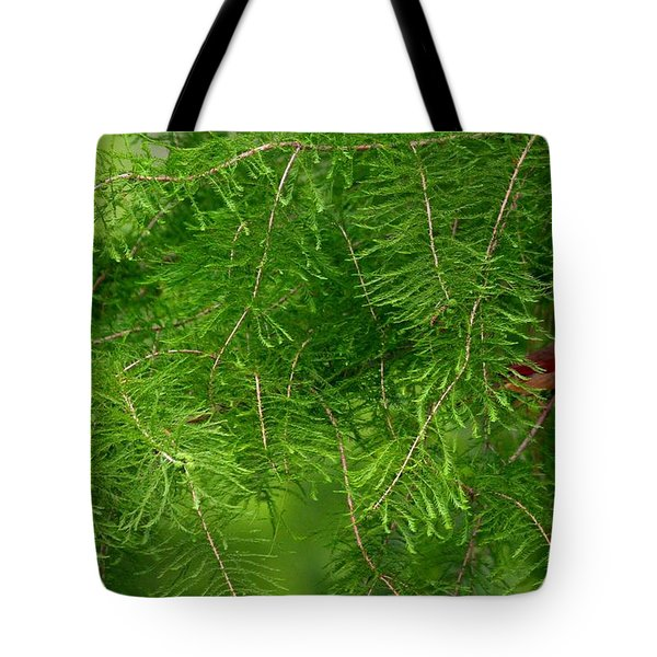 Tote Bag featuring the photograph Peek A Boo by Elizabeth Winter