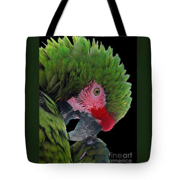 Pensive Parrot Tote Bag