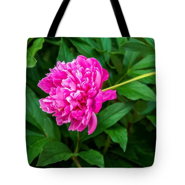 Peony Tote Bag by Steve Harrington