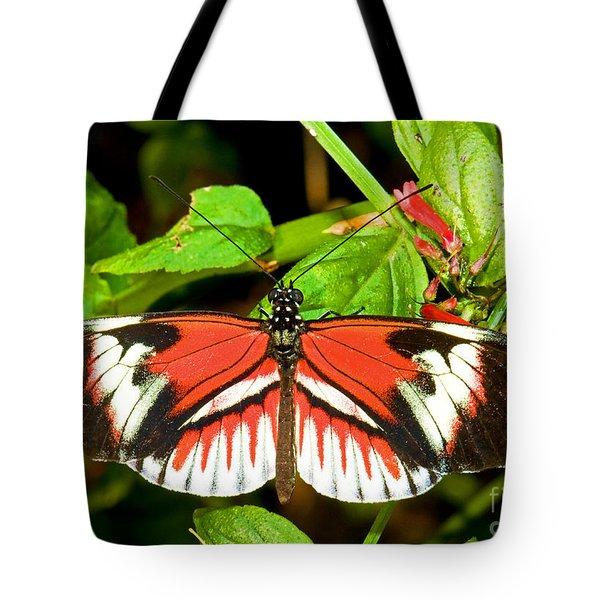 Piano Key Butterfly Tote Bag by Millard H. Sharp