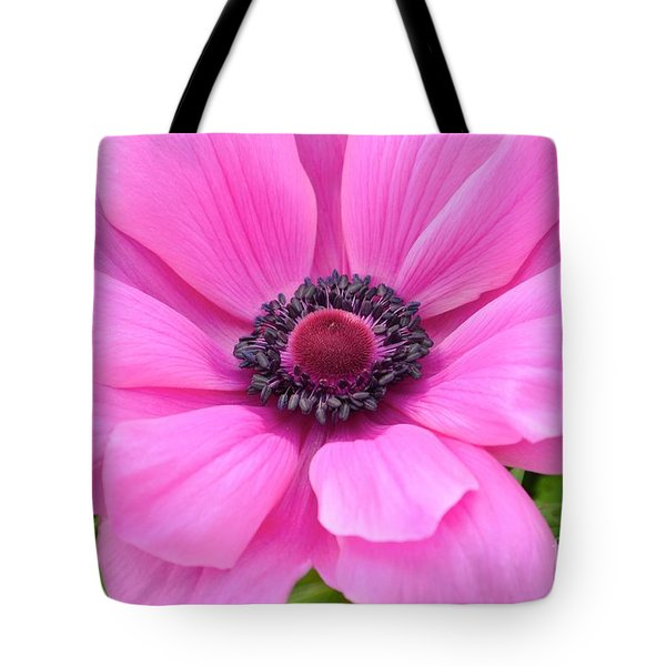 Tote Bag featuring the photograph Pink Flower by Jeannie Rhode