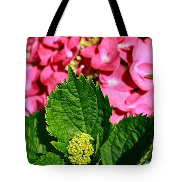 Pink Hydrangea Tote Bag by Gaspar Avila