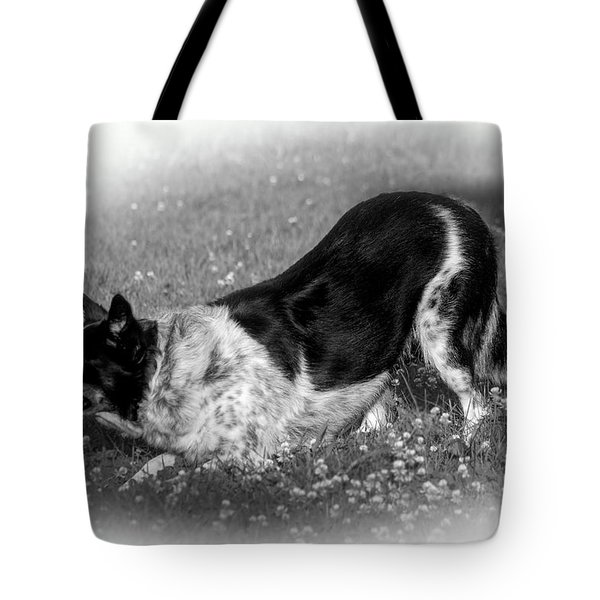 Playful Tote Bag