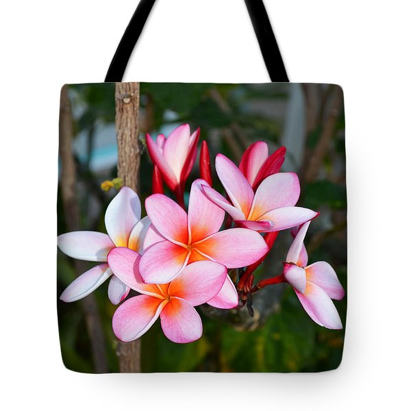 Plumeria Tote Bag by Eva Kaufman