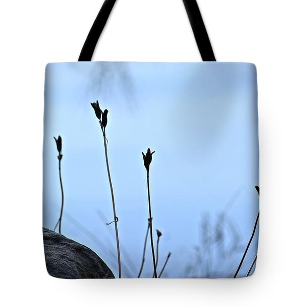 Pods On Pond Tote Bag